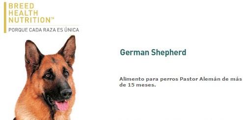 GERMAN SHEP