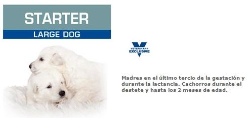 STARTER LARGE DOG