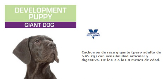 development puppy giant